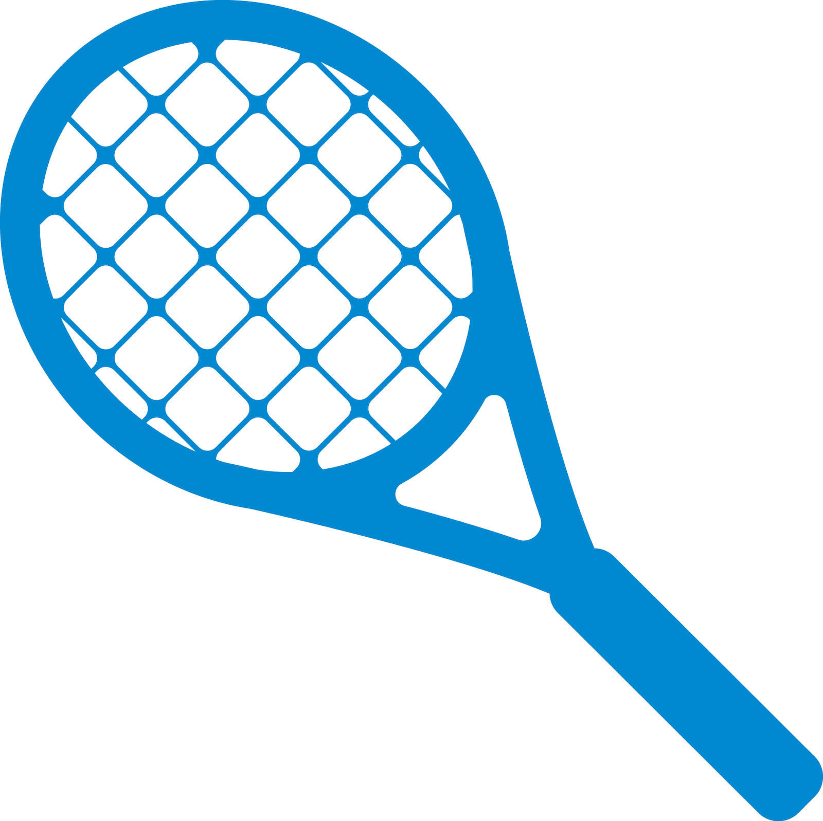 Learn How To Play Pickleball